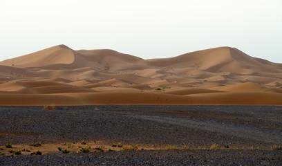 Sand dunes in the Sahara Desert, Morocco, morning