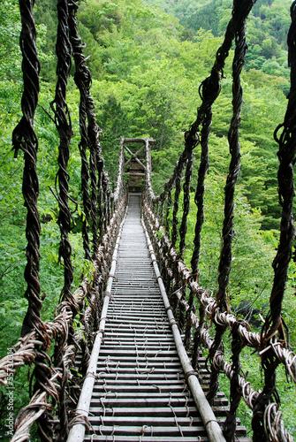 Fototapeta Pont de lianes Kazura-bashi à Oku Iya, Shikoku, Japon