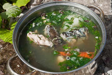 soup made from carp