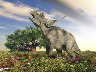 Dinosaurier Diabloceratops