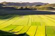 Italia, campi coltivati