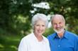 glückliches älteres paar im grünen