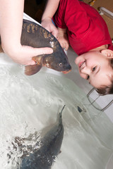 women with son touching christmas carp