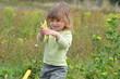 cueillir des haricots