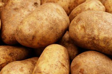 Russet Potatoes Close Up