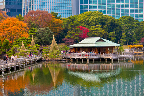 Hama Rikyu Garden in Autumn