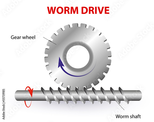 Worm drive or Torsen differential