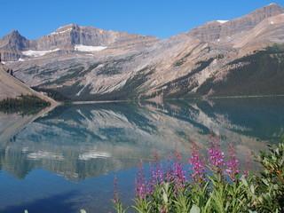 Bow Lake at Jasper National Park