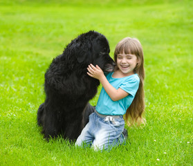 Newfoundland dog kisses a girl