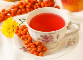 Sea buckthorn tea and autumn flowers