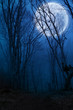 Leinwandbild Motiv dark night forest agaist full moon