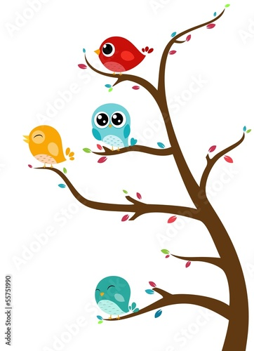 Birds sitting on tree