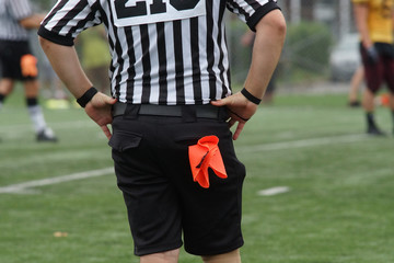 Football referee