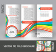 Kid's School Tri-Fold Brochure Design