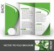 Tennis Competition  Brochure Design