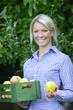 Blonde hübsche Frau mit Äpfel