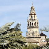 Bell Tower with Palm Trees in Cordoba, Spain.