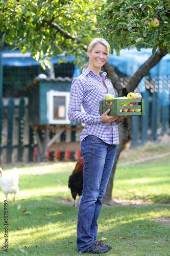 Frau stehend mit Apfelkiste