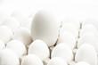 Hühnereier und ein Ei einer Gans