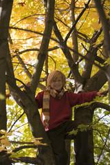 Junge sitzt im Baum