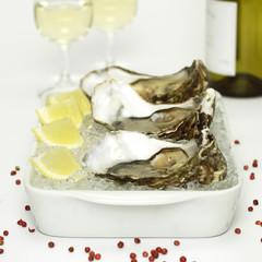 Austern mit Zitronenscheiben auf crushed ice und Weißwein, Nahaufnahme