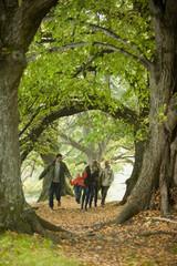Deutschland, Baden-Württemberg, Schwäbische Alb, Familie zusammen spazierend im Wald