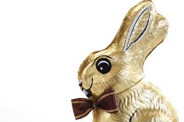 Schokoladen-Häschen, Nahaufnahme