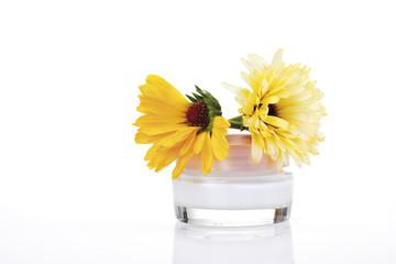 Ringelblumen und Ringelblumen-Creme, Nahaufnahme