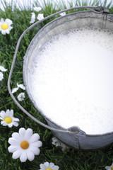 Eimer mit frischer Milch, erhöhte Ansicht, Nahaufnahme