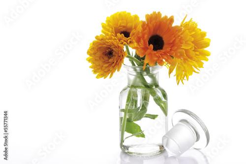 marigold blumen in der vase calendula officinalis nahaufnahme stockfotos und lizenzfreie. Black Bedroom Furniture Sets. Home Design Ideas