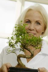 Seniorin mit Topfpflanzen, Bonsai-Baum, lächelnd, Porträt, Nahaufnahme