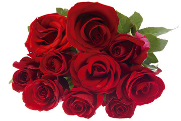 Blumenstrauß aus roten Rosen, Nahaufnahme