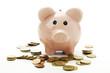 Sparschwein mit Euro-Münzen, Nahaufnahme