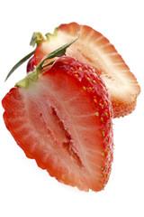 Erdbeere, Querschnitt