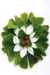 Ginkgo Blätter und Pillen, erhöhte Ansicht, Nahaufnahme