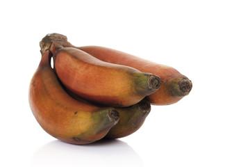 Bündel von roten Bananen, Nahaufnahme