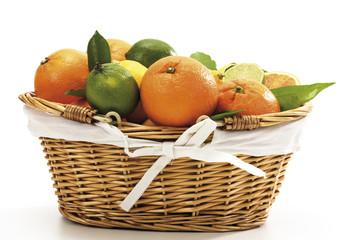 Verschiedene Zitrusfrüchte im Korb