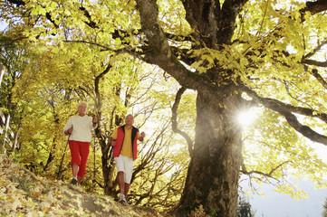 Älteres Paar beim Nordic Walking