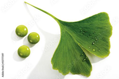 Ginko Blätter und Tabletten