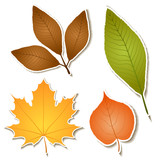 Autumn leaf sticker set