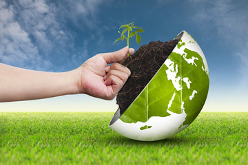 Hand and eco world  on grass sky background 2