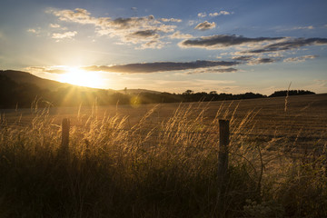 Beautiful Summer landscape of sun backlighting field in countrys