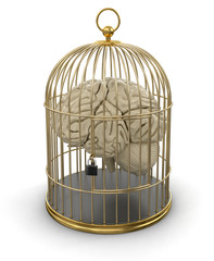 Gold Cage with Human brain (clipping path included)