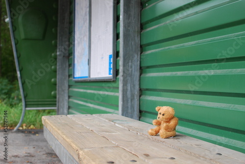 Lonely bear waiting for bus