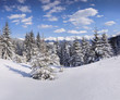 Beautiful winter landscape in the Carpathian mountains. Ukraine,