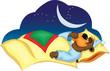 Постер, плакат: медведь спит и сосет палец