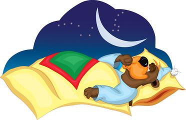 медведь спит и сосет палец