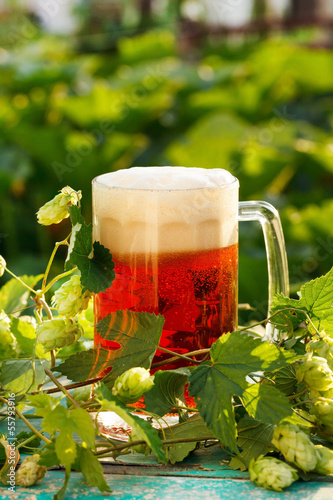 hops with beer