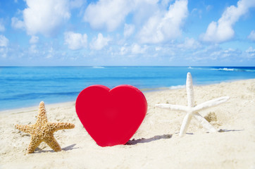 Heart and starfishes on the sandy beach