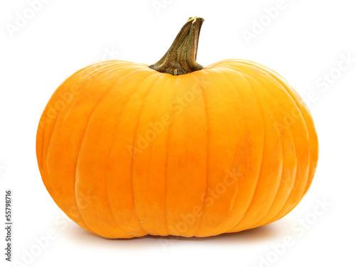 Single pumpkin isolated on white